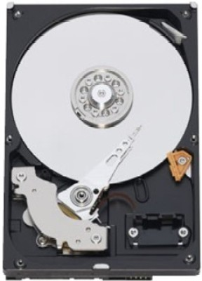 Buy Seagate Barracuda 1 TB Desktop Internal Hard Drive (ST1000DM003): Internal Hard Drive